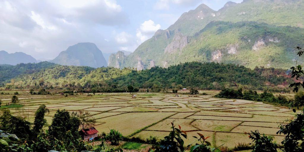 שדות אורז בהרי לאוס