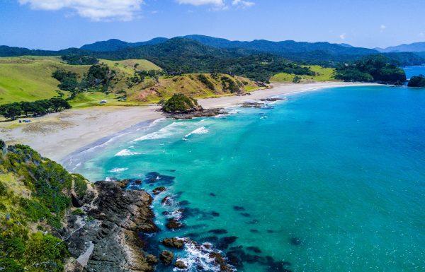 ניו זילנד מידע כללי